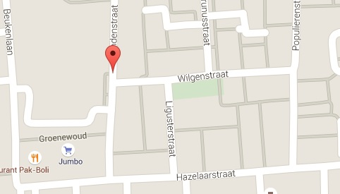 lindenstraat en hazelaarstraat bomenridders
